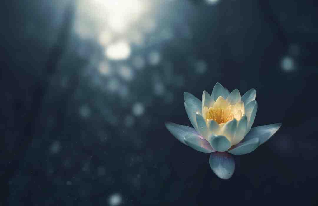 Comment apprendre à méditer seul ?